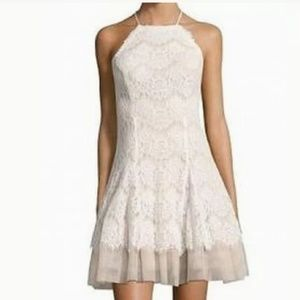 NWT Ivory Blush Lace Tulle Cocktail Midi Dress 14